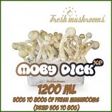 Moby Dick 1200ml Grow Kit
